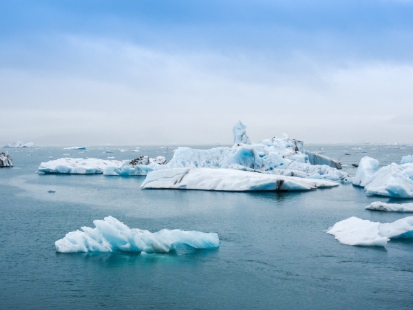 Ice bergs melting due to climate change